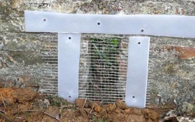 使用防鼠网封堵排水口.jpg
