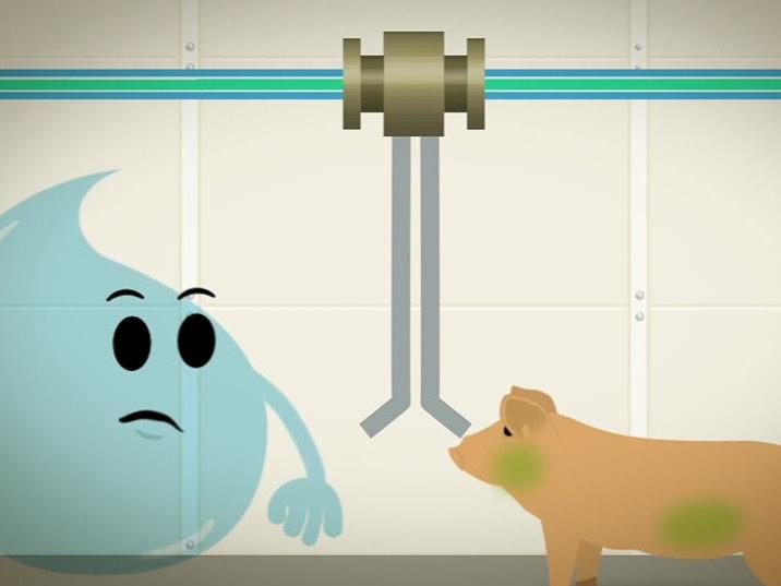猪场饮水系统清洁及有机酸的使用