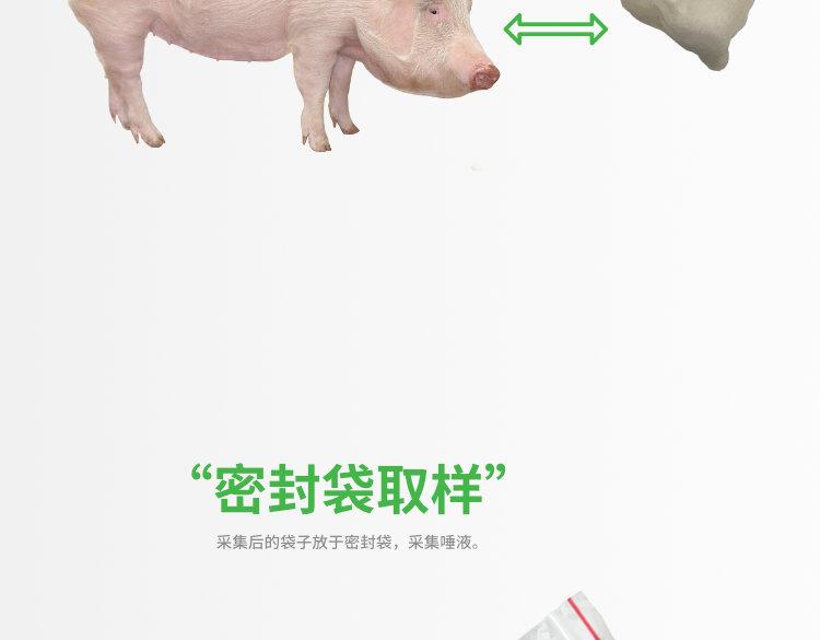 猪用唾液采集袋 育肥舍 保育舍 实验室 兽医耗材 第11张