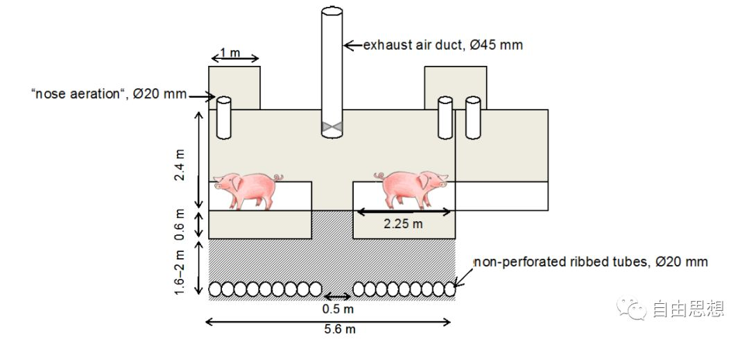 分娩舍地热空气交换系统的应用 养猪知识