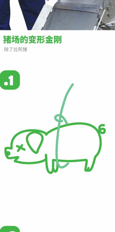 MAXX猪场多功能死猪运输车 分娩舍 育肥舍 怀孕舍 配种舍 母猪舍 公猪舍 生物安全 第6张